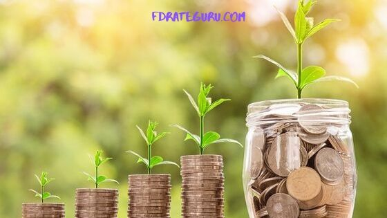 Fixed Deposit Interest Rate or FD Rates
